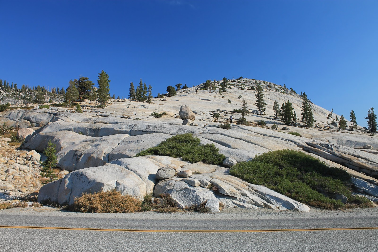 Yosemite National Park Tioga Pass geology travel field trip copyright rocdoctravel.com