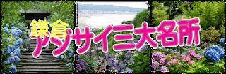 鎌倉アジサイ三大名所