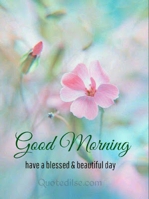 good morning quotation hindi