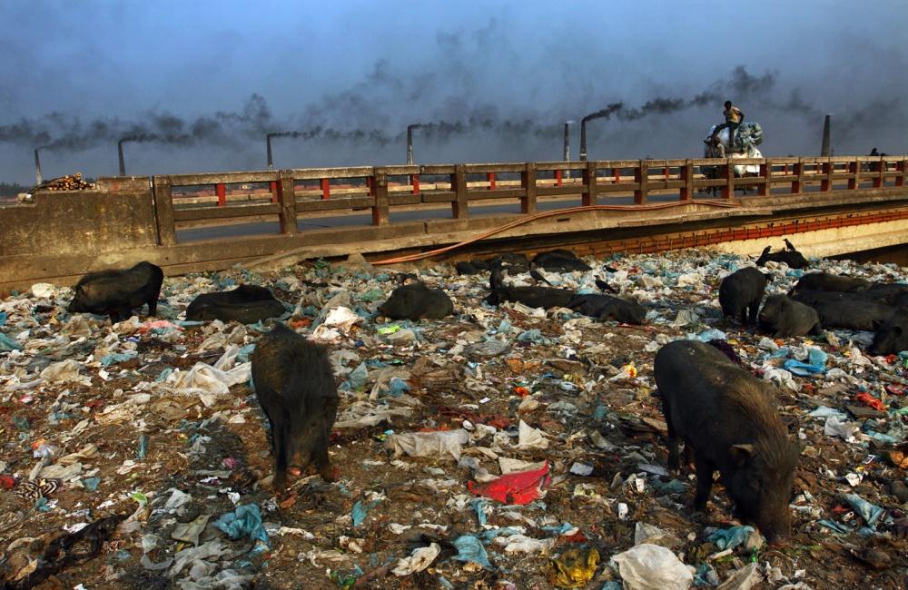 Water pollution dhaka city essay