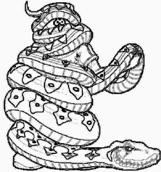 water snake coloring pages - photo#28