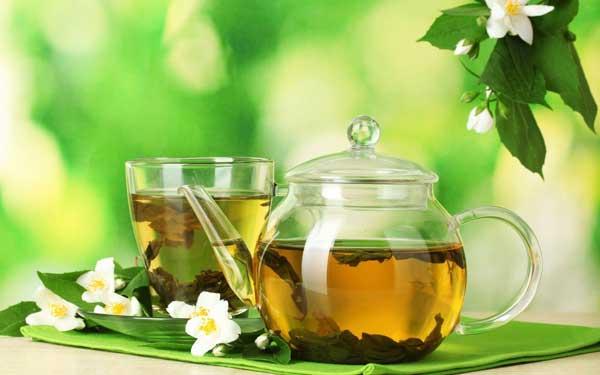 Жасмин – кустарник семейства маслиновых с белыми звездообразными очень душистыми цветками.