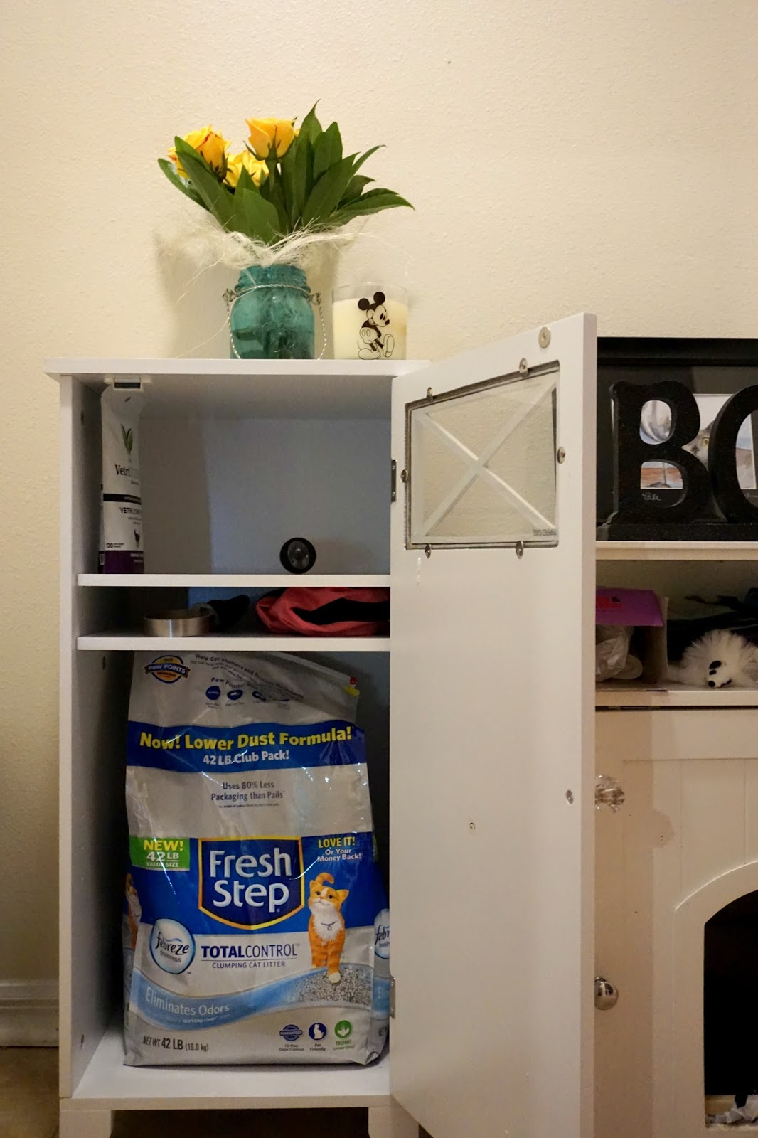 I run for wine cat litter box area in a small living space yougottabekittenme - Litter boxes for small spaces paint ...