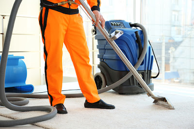 Guide to Cleaning and Maintaining Carpet