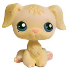 Littlest Pet Shop Multi Packs Retriever (#436) Pet