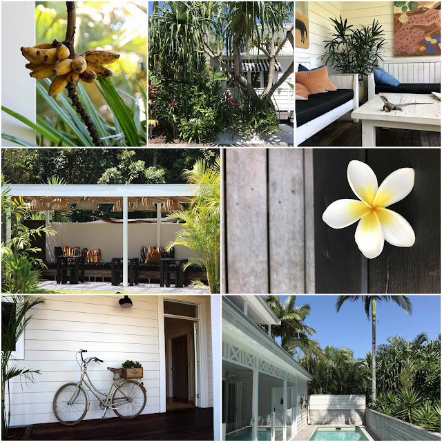Banana tree. Palm trees. A water dragon on a table. Chairs and benches under a white pergola. A white frangipani. A bicycle in front of a white weatherboard house. A swimming pool next to the verandah of a white weatherboard house.