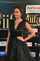 Esha Gupta in a Deep Neck Sleeveless Dark Green Gown at IIFA Utsavam Awards 2017     11.JPG