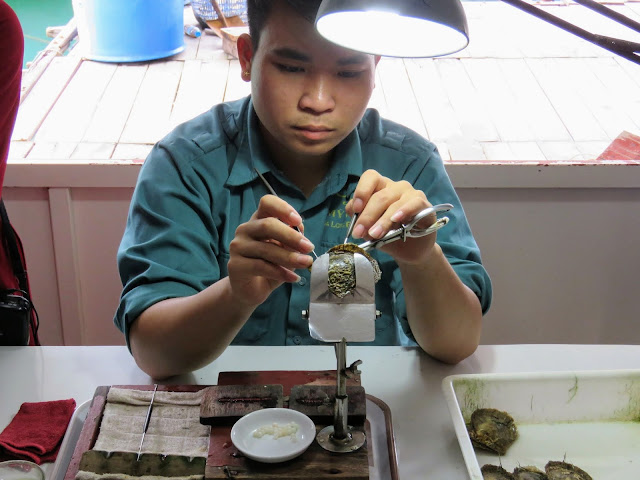 Extracting pearls in Halong Bay Vietnam