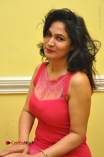Telugu Actress Vijaya Murthy Stills in Red Short Dress at Www.Meena Bazaar Movie Opening  0047.JPG