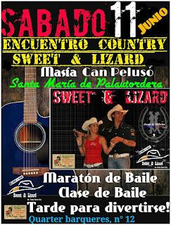 Sweet & Lizard