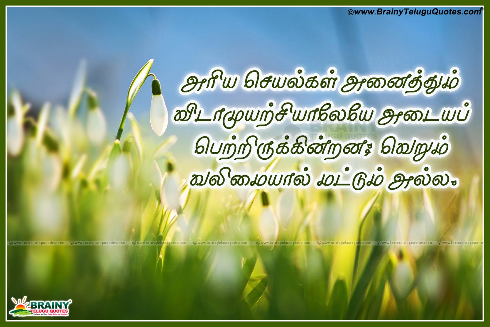 Thought Of The Day Motivational Tamil Life Motivational Thoughts Images  Brainyteluguquotes