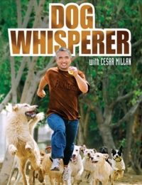 Dog Whisperer with Cesar Millan 3 | Bmovies