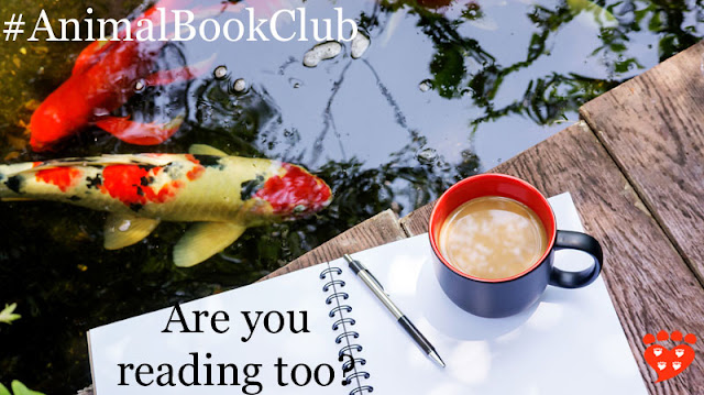 A cup of coffee and a notebook by a pool full of koi. What a Fish Knows is the book for November 2017.