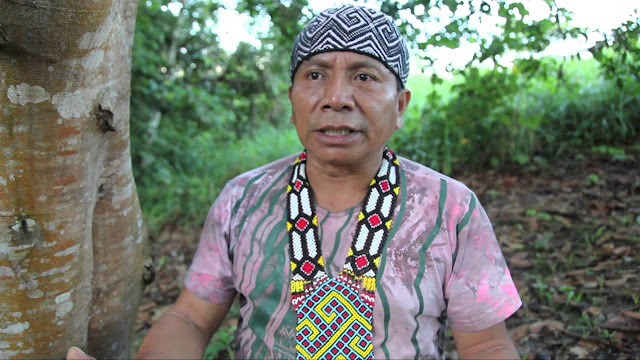 Txana Ibã Huni Kuin (Isaías Sales) Mestre Cantos Tradição do povo Huni Kuin-1