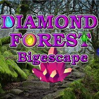 BigEscapeGames Diamond Forest Bigescape Walkthrough