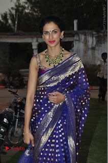 Model Shilpa Reddy Stills in Purple Silk Saree at Gudi Sambaralu 2017 Sri Ramachandra Swami Temple  0045.JPG