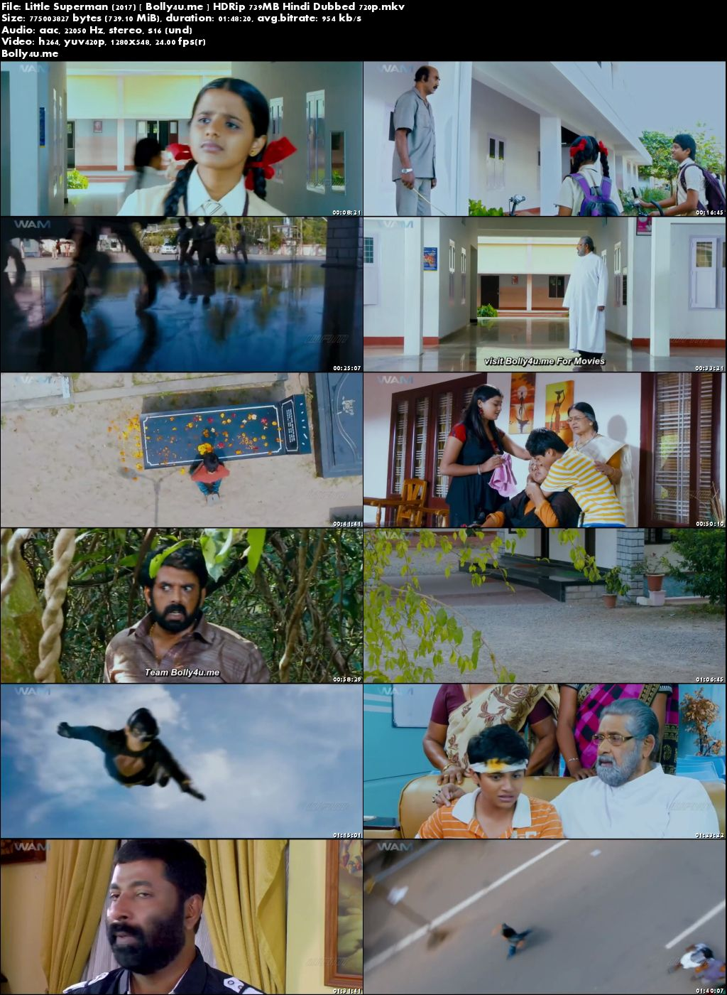 Little Superman 2017 HDRip 300MB Hindi Dubbed 480p Download