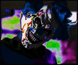 fotos palhaÇos do crime coringa joker devil clown photos image sick