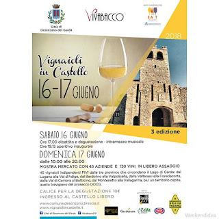 Vignaioli in Castello 16-17 giugno Desenzano del Garda (BS)