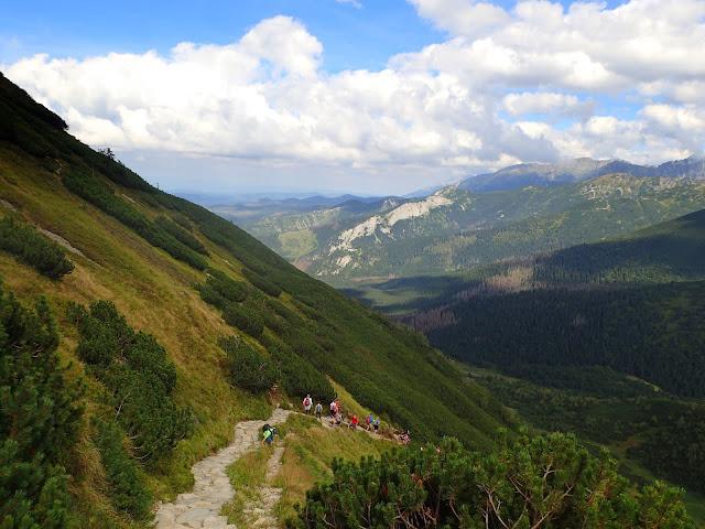 Niebieski szlak Hala Kondratowa - Kondracka Przełęcz