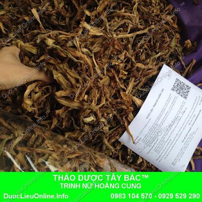 THẢO DƯỢC TRINH NỮ HOÀNG CUNG