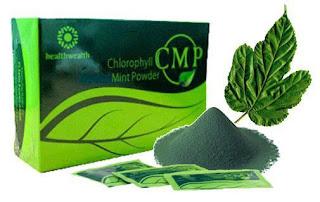 Klorofil daun mulberry