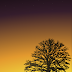 Draw a sunset with tree silhouette landscape scene using Inkscape and the Gimp