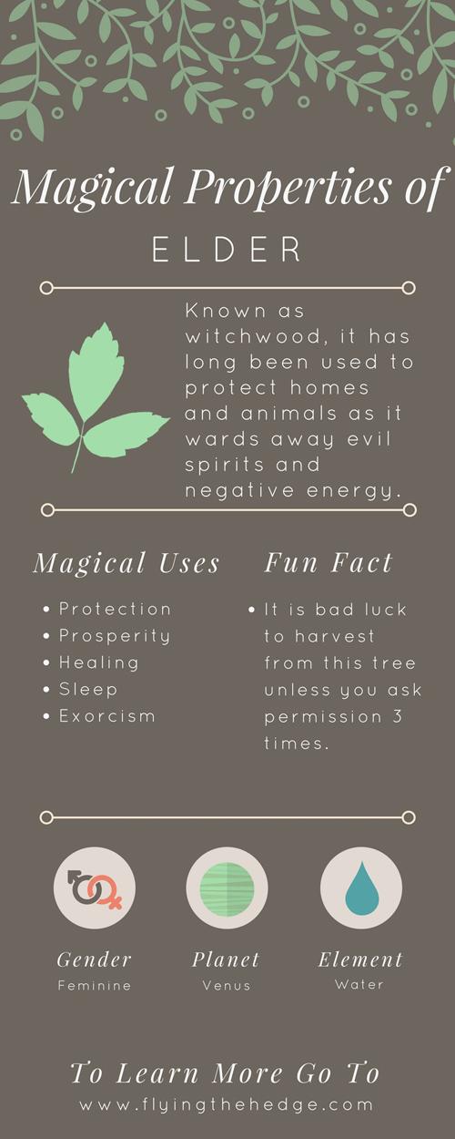Magical Properties of Elder
