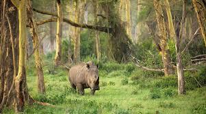 12 Taman Nasional yang Ada di Pulau Jawa