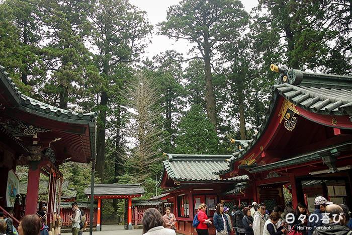 Cour centrale du Hakone-jinja avec vue sur les cimes des arbres en arrière-plan