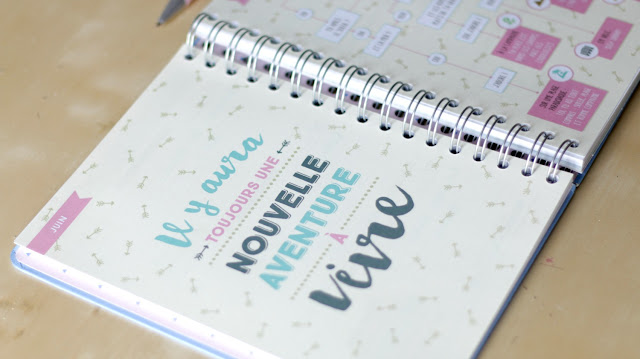 agenda mr wonderful agathe diary