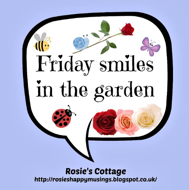 Friday Smiles In The Garden