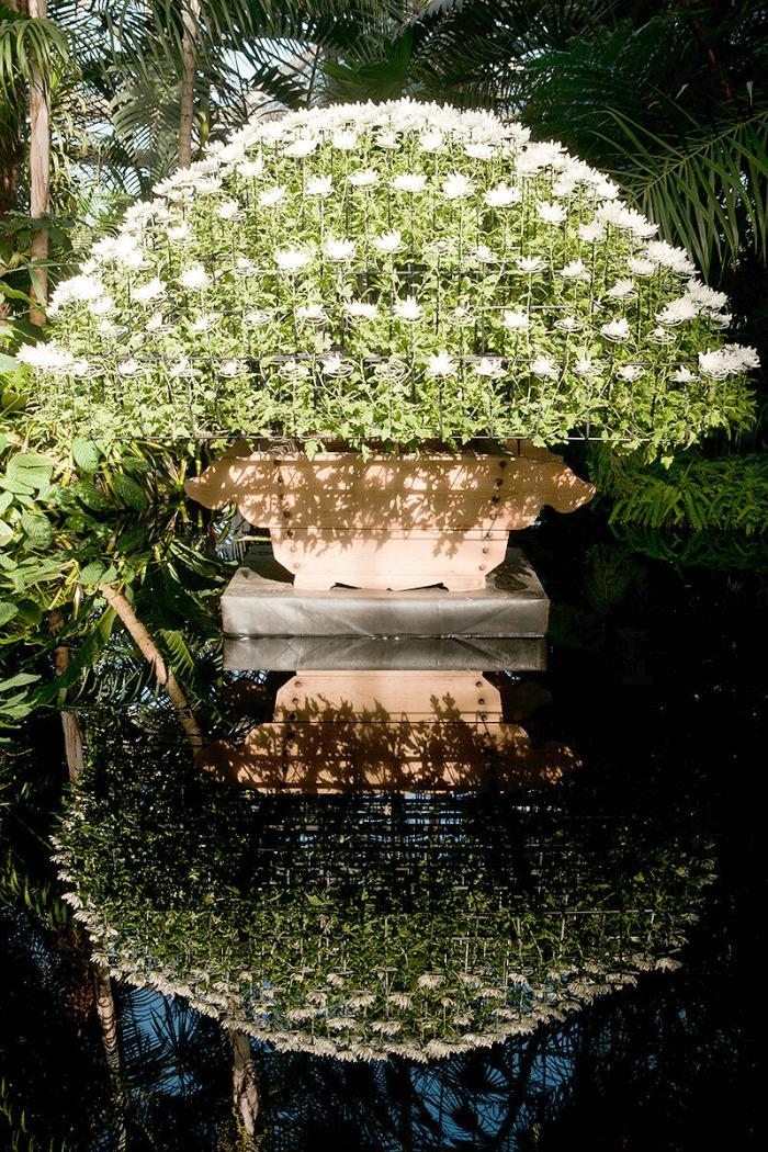 Ozokury en el Jardín Botánico de Nueva York