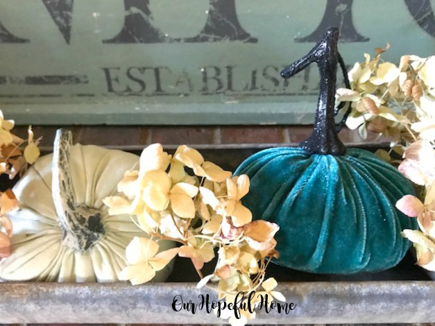 vintage chicken feeder plush pumpkins dried hydrangeas farmhouse sign
