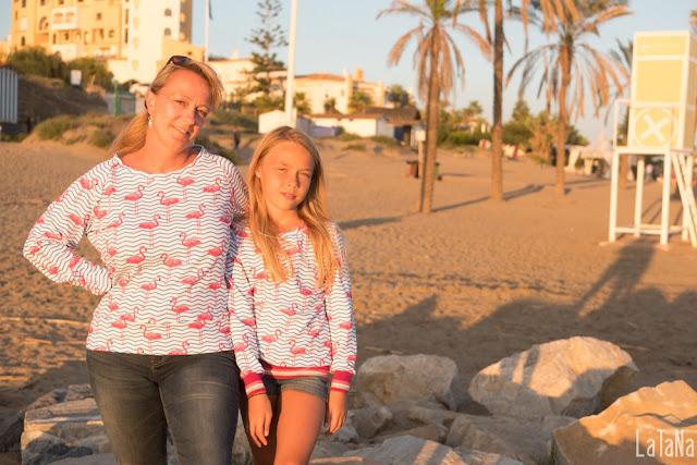 Sweatshirt, Flamingos