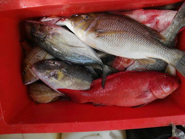 Lokasi Menarik Memancing atau Snorkeling kat Pulau Mantanani Sabah 2