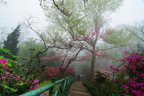 Núi Yang Ming Shan - Núi Dương Minh tại Đài Loan