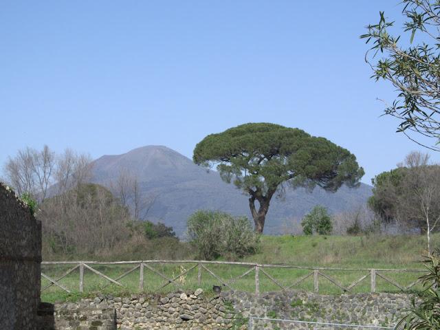 widok na wulkan Wezuwiusz
