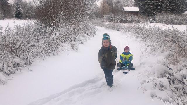 Talvella on hauskaa rattikelkkailla!