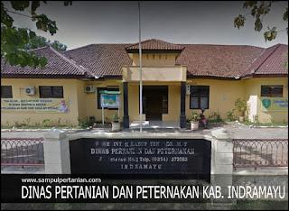 Alamat Dinas Pertanian dan Peternakan Kabupaten Indramayu