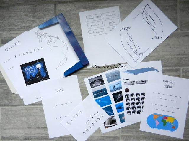Activité Peau d'Âne, Hiver, Pingouin/Manchot/Gorfou/Macareux, Baleine bleue