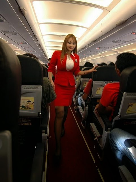 naked sexy airline stewardess