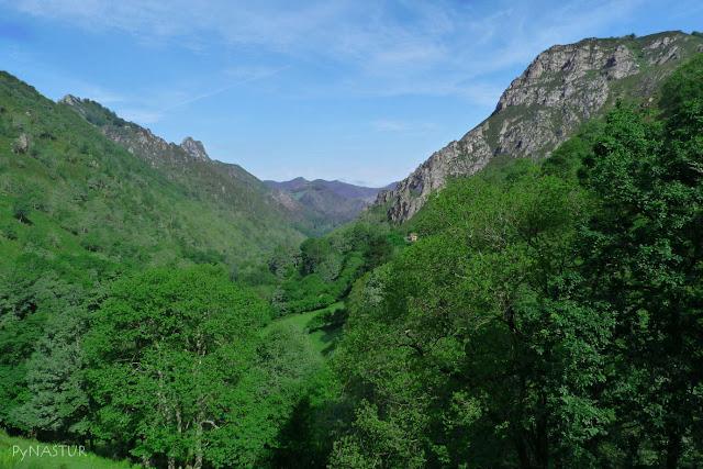 Montes Degoes y  La Cerecal - Piloña - Asturias