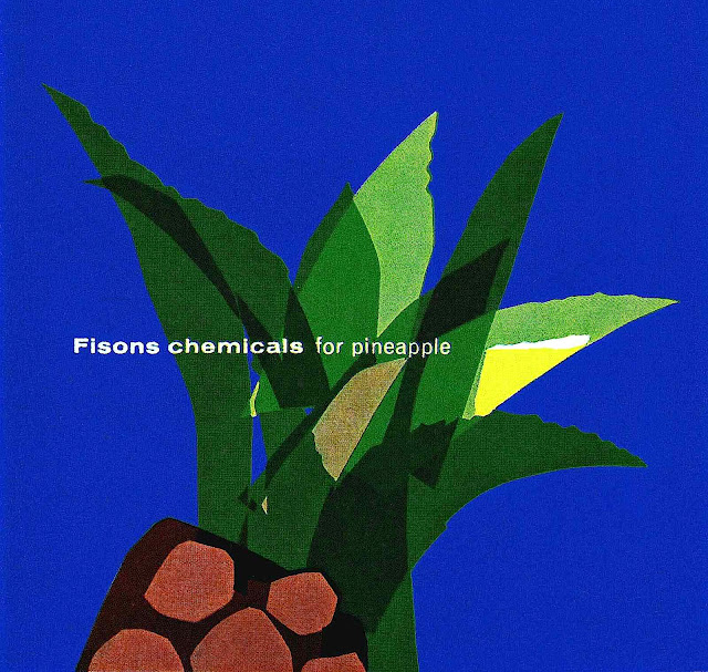 Fisons chemicals for pineapple illustration