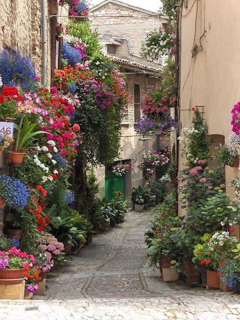 سبيلو ,إيطاليا Spello, Italy