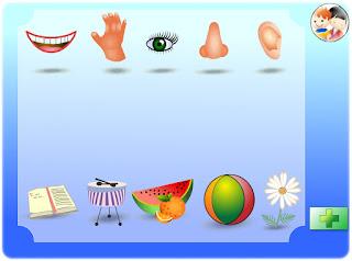 http://ntic.educacion.es/w3/eos/MaterialesEducativos/mem2009/pequetic/correspondencias%20sentidos.swf