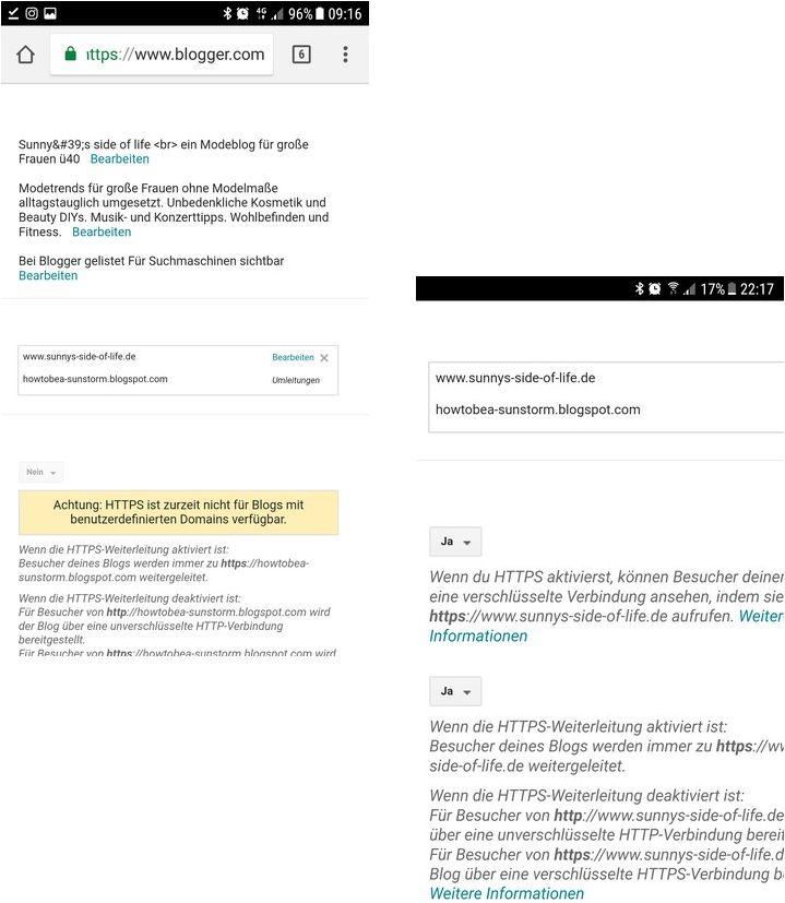 Screenshot-Bloggerdashboard-Umstellung-benutzerdefinierte-Domain-auf-ssl