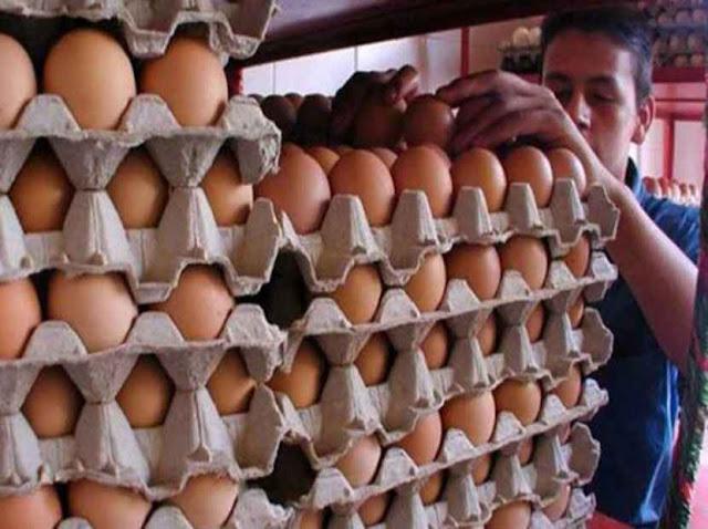 Producción de huevos ha registrado una caída de casi 100%, aseguran productores