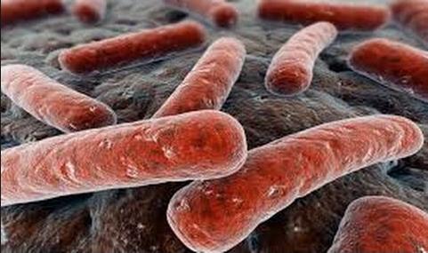 Kebiasan Buruk yang Bisa Sebabkan Tuberkulosis