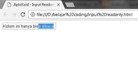 Cara Membuat Form Input Tidak Bisa Diisi Dalam HTML